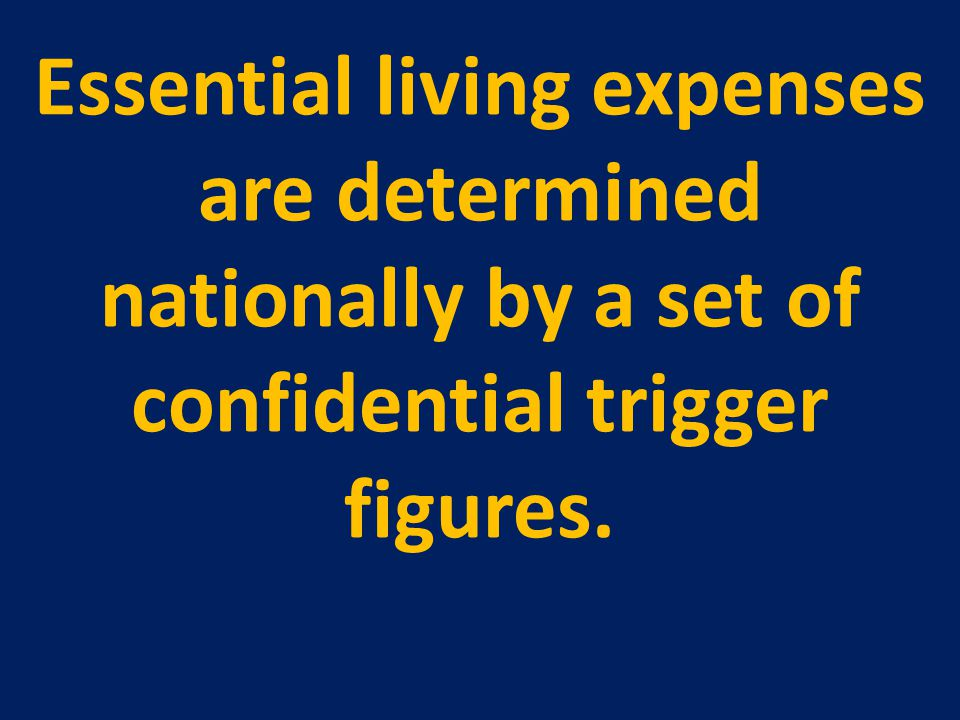 Essential living expenses are determined nationally by a set of confidential trigger figures.