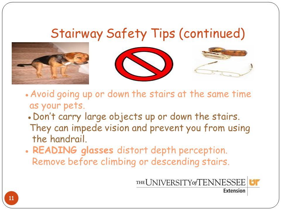 Stairway Safety Tips (continued) 11 ●Avoid going up or down the stairs at the same time as your pets.