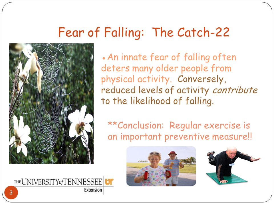 Health-Related Causes of Falls: ●Impaired Vision accounts for some falls, highlighting the importance of regular eye exams.