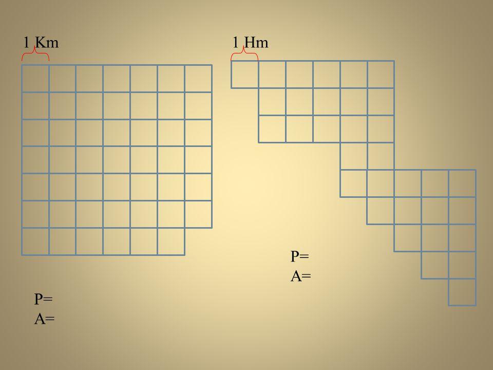 P= A= P= A= 1 Km1 Hm