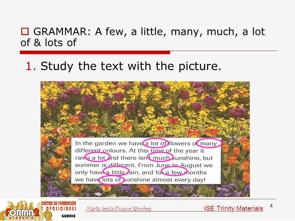 4  GRAMMAR: A few, a little, many, much, a lot of & lots of 1. Study the text with the picture. María Jesús Duque Sánchez ISE Trinity Materials