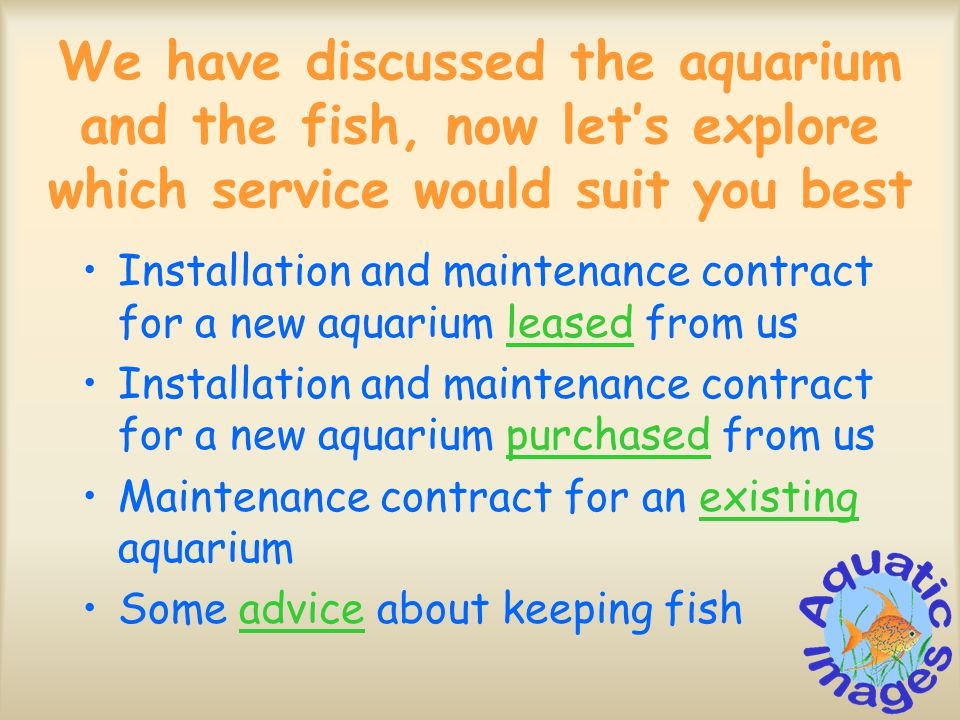 We have discussed the aquarium and the fish, now let's explore which service would suit you best Installation and maintenance contract for a new aquarium leased from usleased Installation and maintenance contract for a new aquarium purchased from uspurchased Maintenance contract for an existing aquariumexisting Some advice about keeping fishadvice
