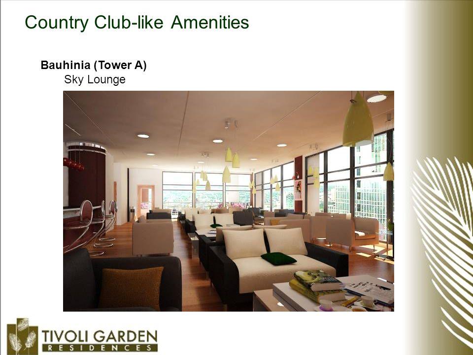 Country Club-like Amenities Bauhinia (Tower A) Sky Lounge