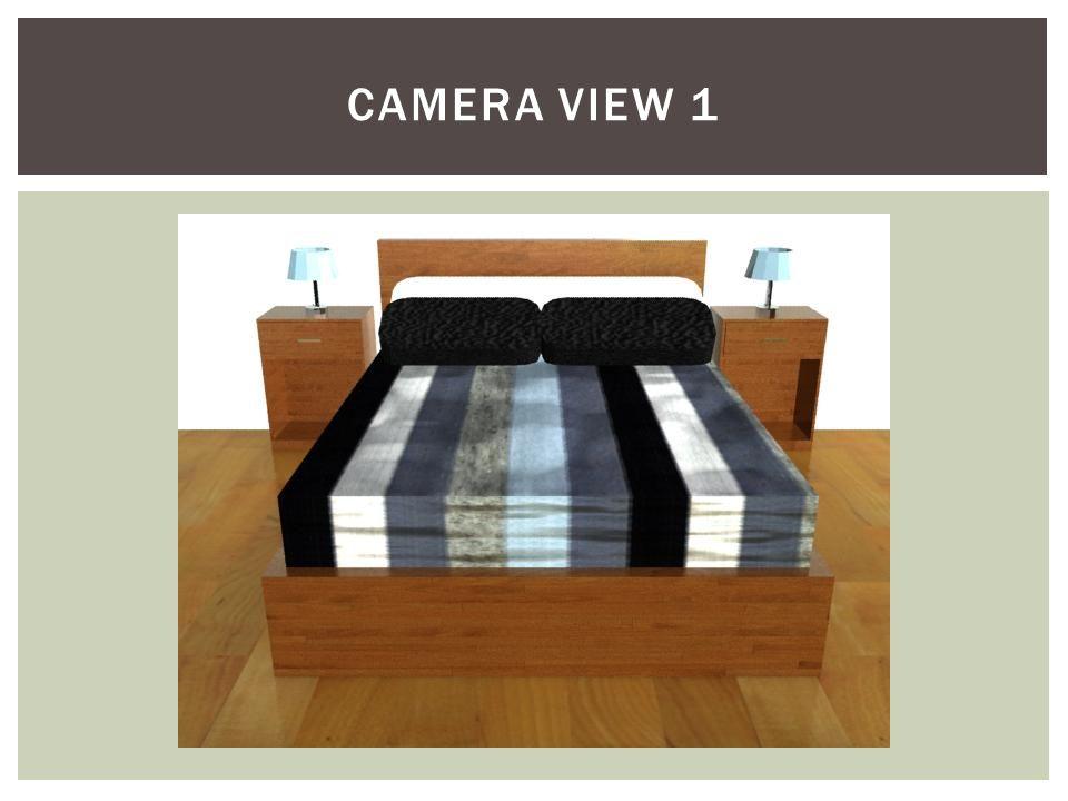 CAMERA VIEW 1