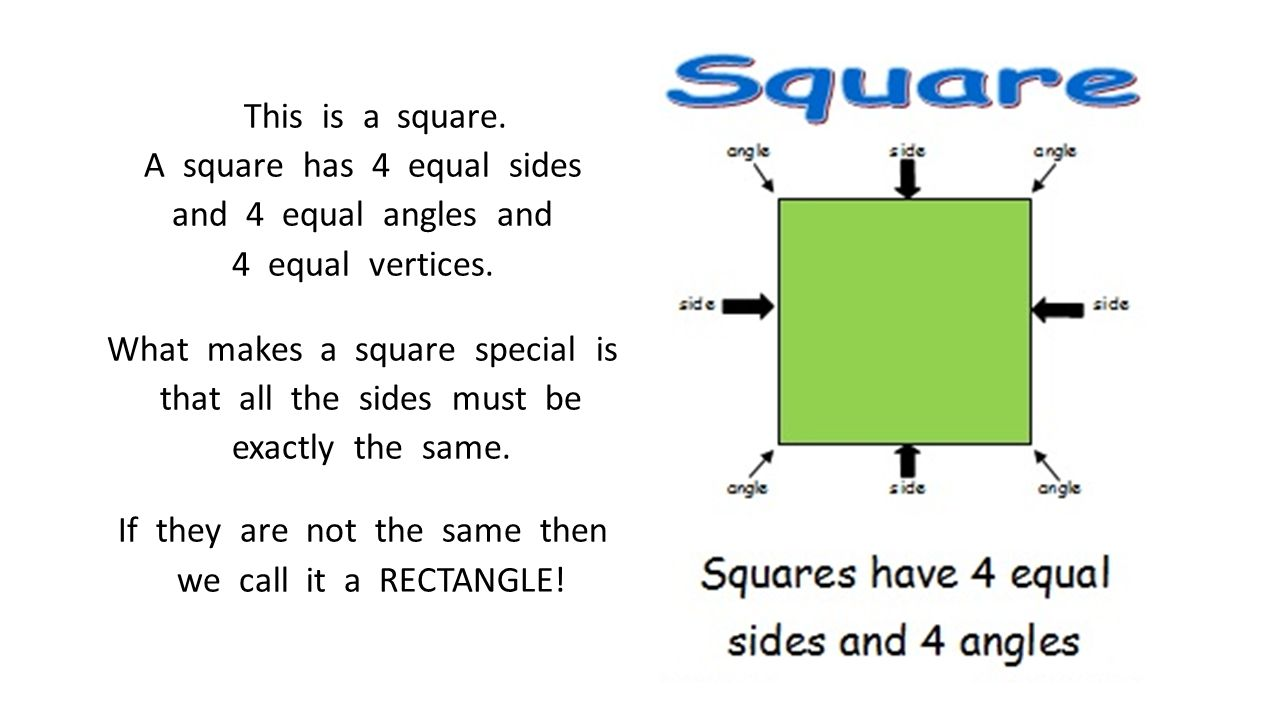 There is one more way to partition a rectangle into 4 equal parts.