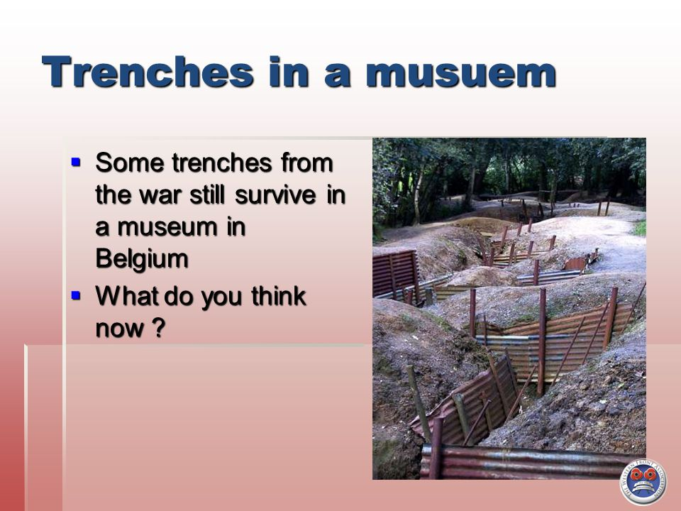 Trenches in a musuem  Some trenches from the war still survive in a museum in Belgium  What do you think now