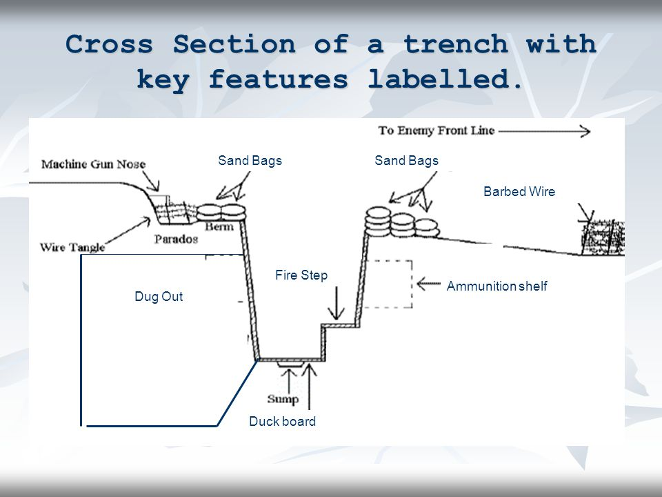 Cross Section of a trench with key features labelled.