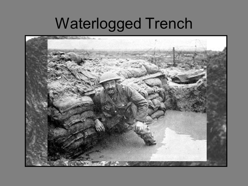 Waterlogged Trench