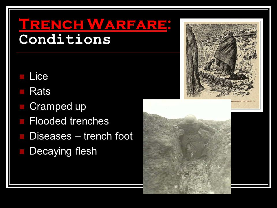 Trench Warfare: Conditions Lice Rats Cramped up Flooded trenches Diseases – trench foot Decaying flesh