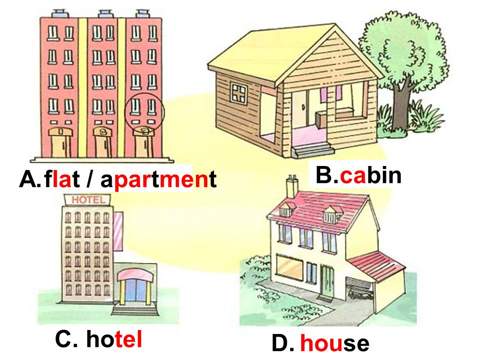 flat / apartment cabin hotel house A. B. C. D.