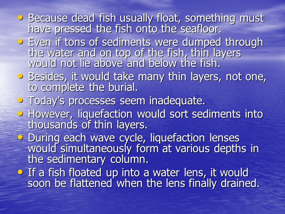 Because dead fish usually float, something must have pressed the fish onto the seafloor. Because dead fish usually float, something must have pressed
