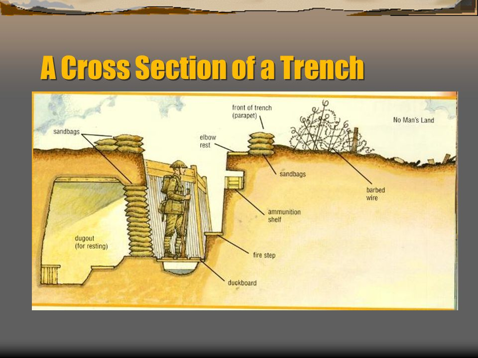 A Cross Section of a Trench