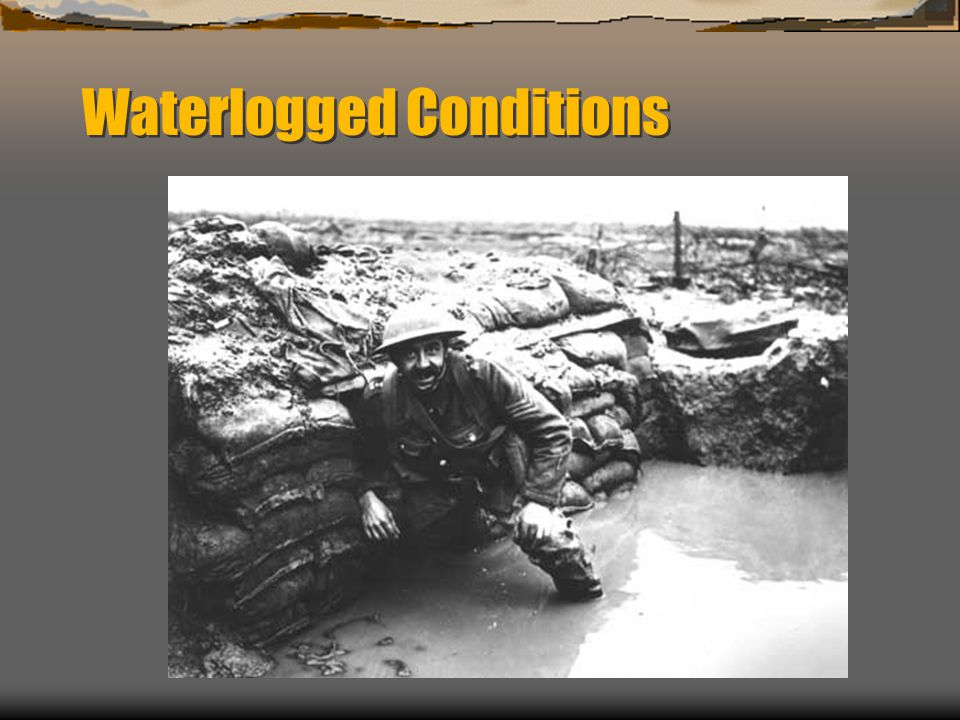 Waterlogged Conditions