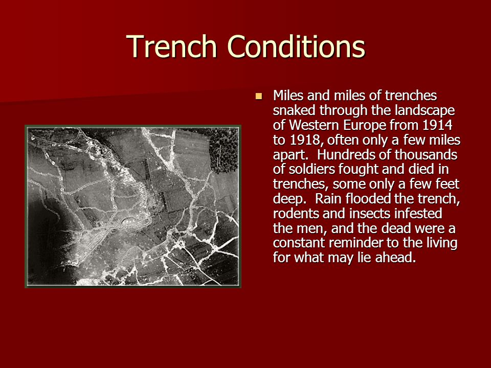 Trench Conditions Miles and miles of trenches snaked through the landscape of Western Europe from 1914 to 1918, often only a few miles apart.