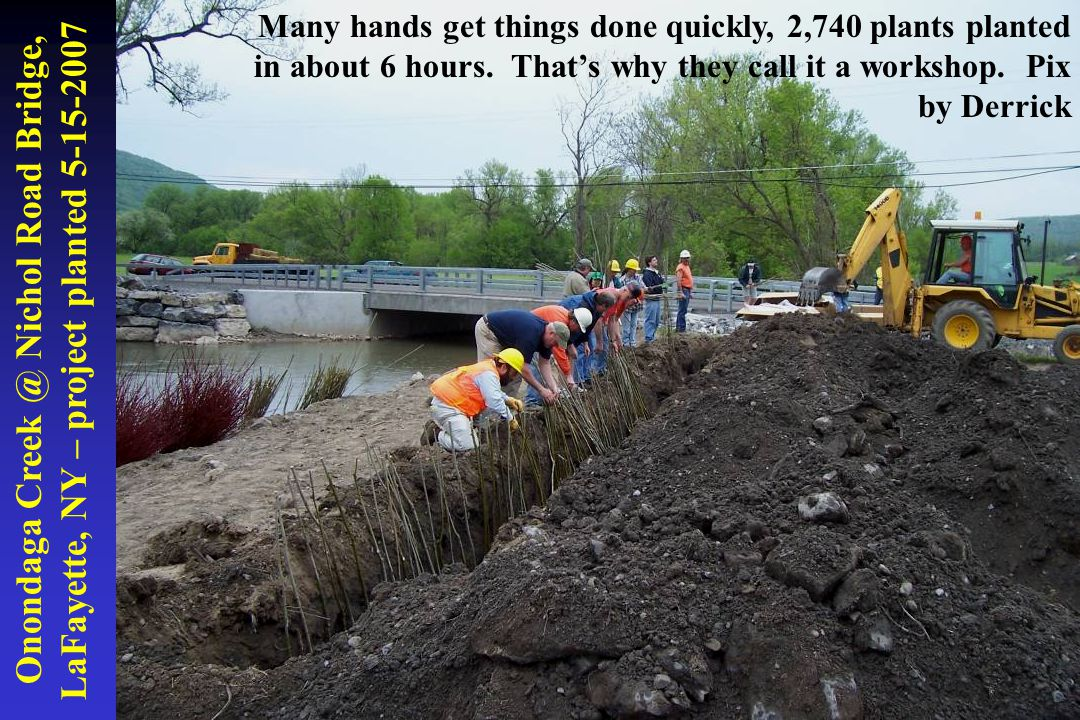 Onondaga Creek @ Nichol Road Bridge, LaFayette, NY – project planted 5-15-2007 Many hands get things done quickly, 2,740 plants planted in about 6 hou