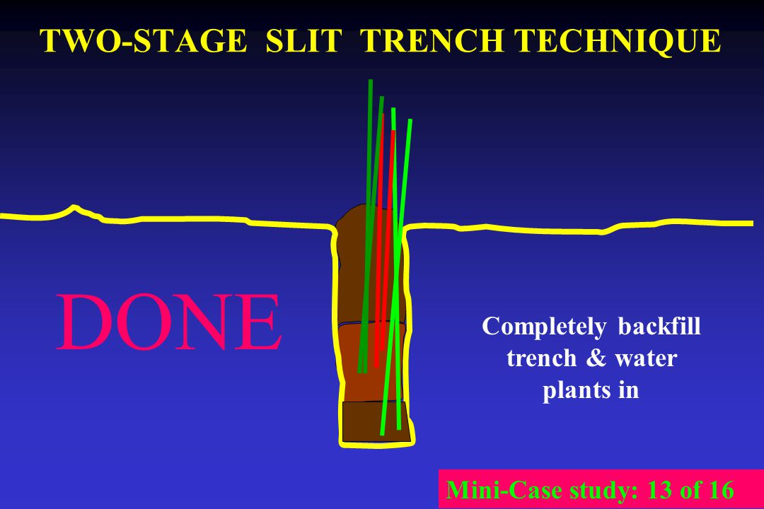TWO-STAGE SLIT TRENCH TECHNIQUE Completely backfill trench & water plants in Mini-Case study: 13 of 16 DONE