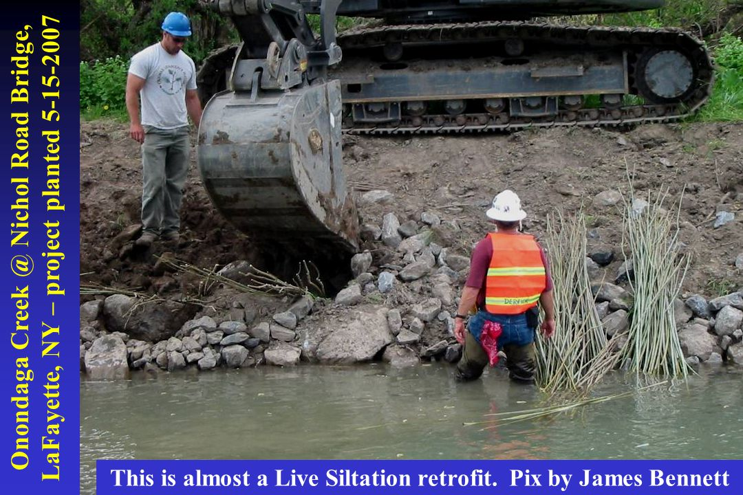 Onondaga Creek @ Nichol Road Bridge, LaFayette, NY – project planted 5-15-2007 This is almost a Live Siltation retrofit. Pix by James Bennett
