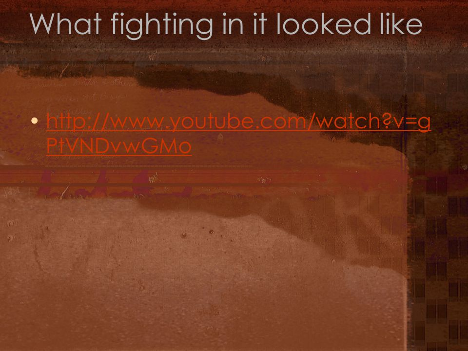 What fighting in it looked like http://www.youtube.com/watch?v=g PtVNDvwGMohttp://www.youtube.com/watch?v=g PtVNDvwGMo