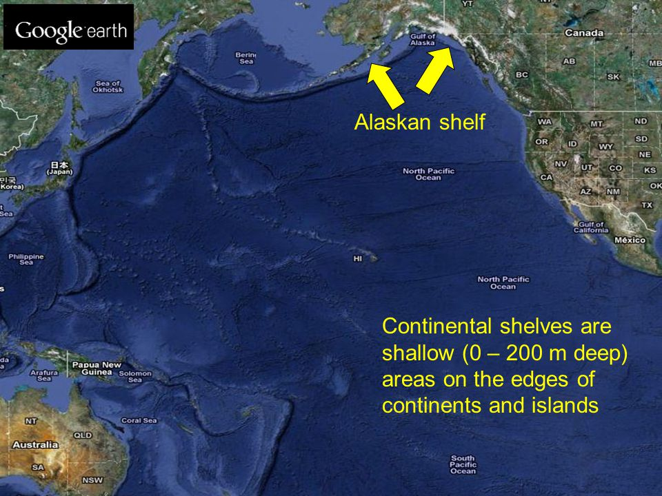 Alaskan shelf Continental shelves are shallow (0 – 200 m deep) areas on the edges of continents and islands
