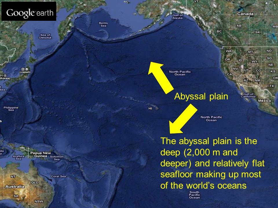 The abyssal plain is the deep (2,000 m and deeper) and relatively flat seafloor making up most of the world's oceans Abyssal plain