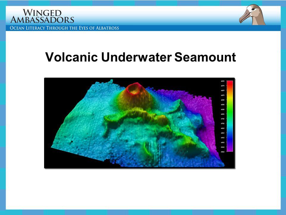 Volcanic Underwater Seamount
