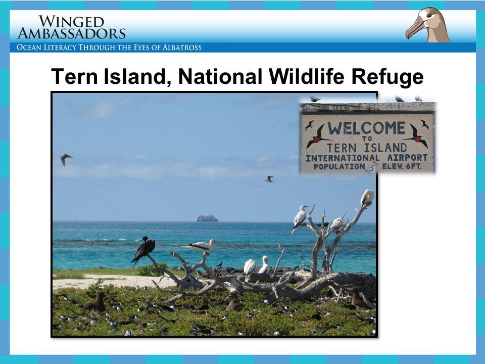 Tern Island, National Wildlife Refuge
