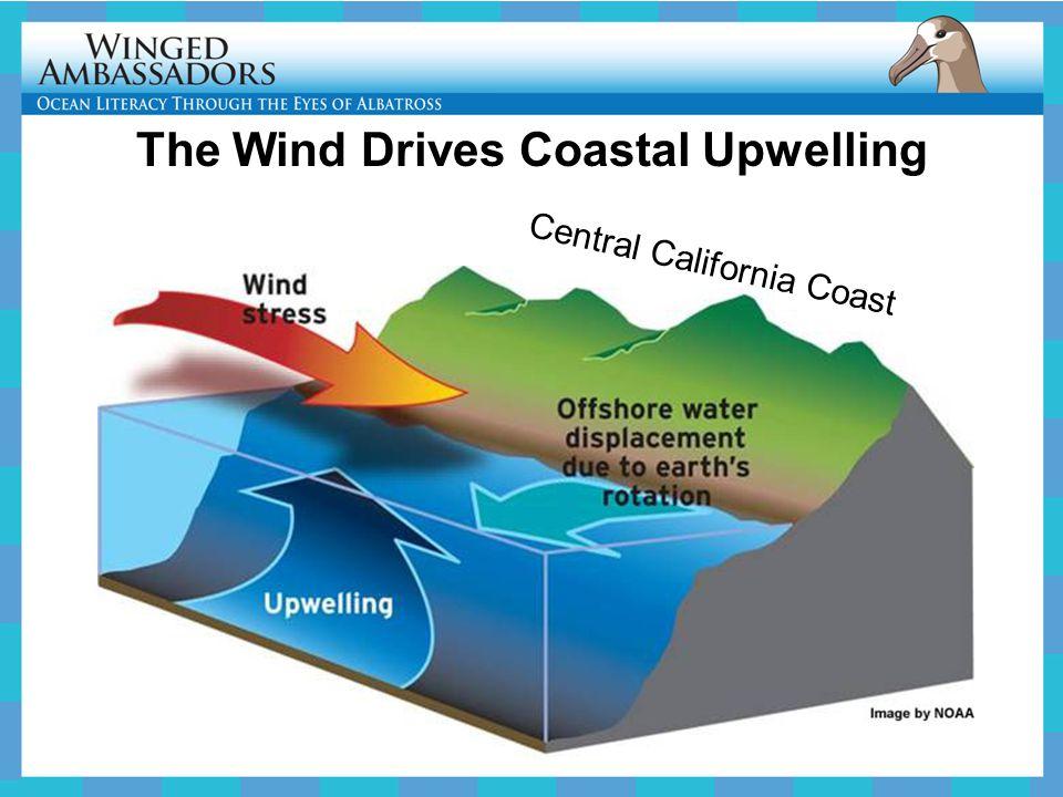 The Wind Drives Coastal Upwelling Central California Coast