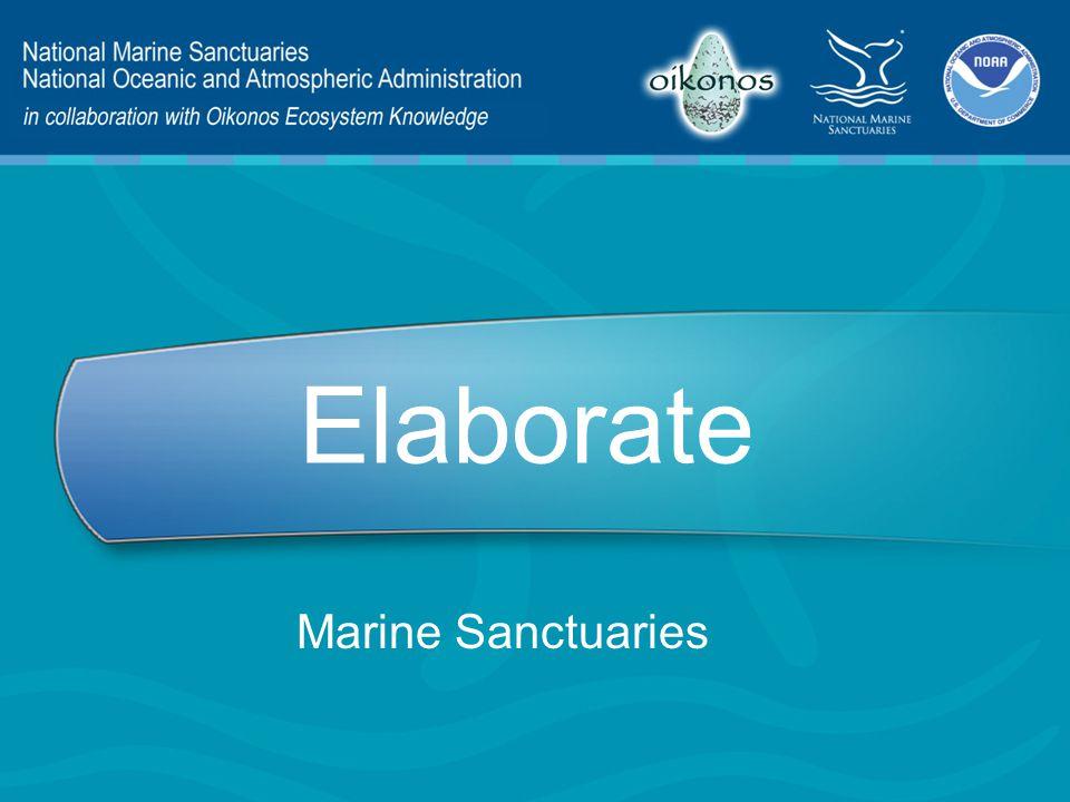 Elaborate Marine Sanctuaries