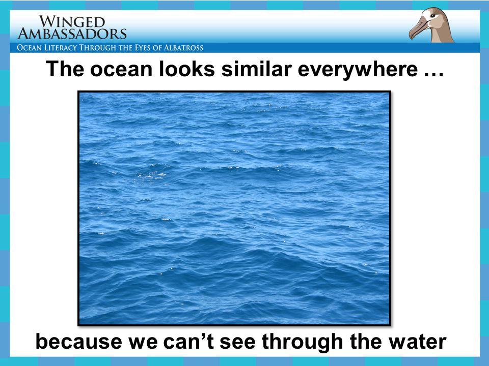 The ocean looks similar everywhere … because we can't see through the water