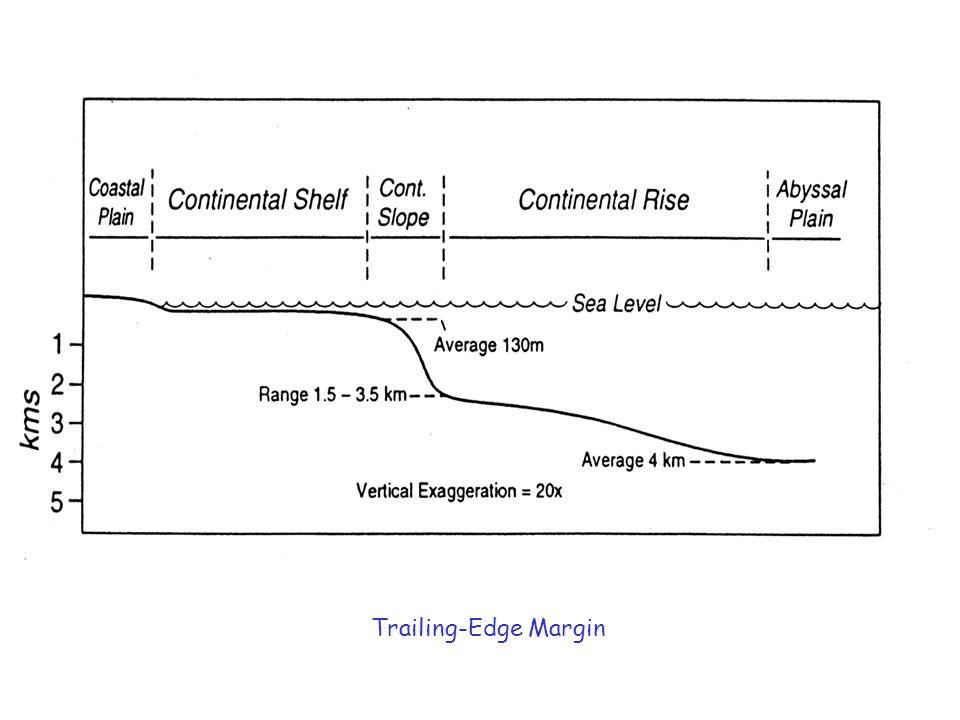 Trailing-Edge Margin