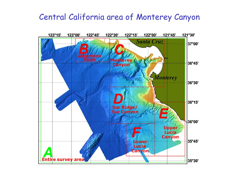 Central California area of Monterey Canyon
