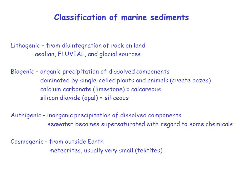 Classification of marine sediments Lithogenic – from disintegration of rock on land aeolian, FLUVIAL, and glacial sources Biogenic – organic precipitation of dissolved components dominated by single-celled plants and animals (create oozes) calcium carbonate (limestone) = calcareous silicon dioxide (opal) = siliceous Authigenic – inorganic precipitation of dissolved components seawater becomes supersaturated with regard to some chemicals Cosmogenic – from outside Earth meteorites, usually very small (tektites)