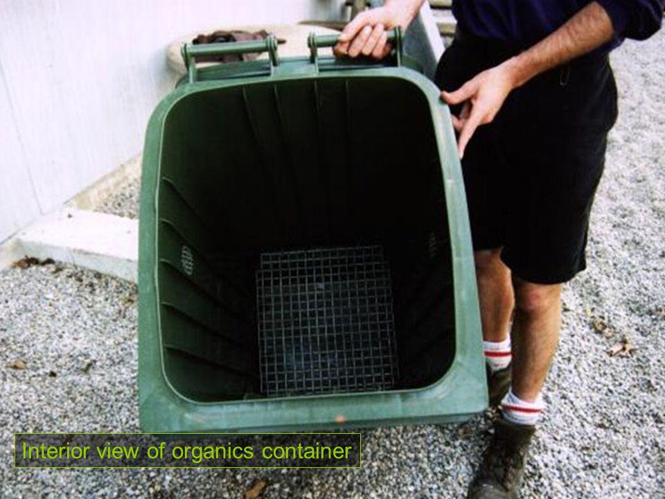 Interior view of organics container