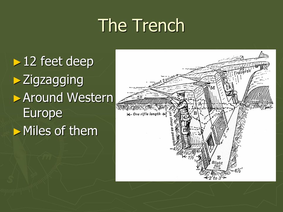 Trenches ► Disadvantages ► Insects ► Rodents ► Flooding ► Trench foot ► Trapped gas ► Advantages ► Easy to defend ► No man's land ► Protection from Grenades