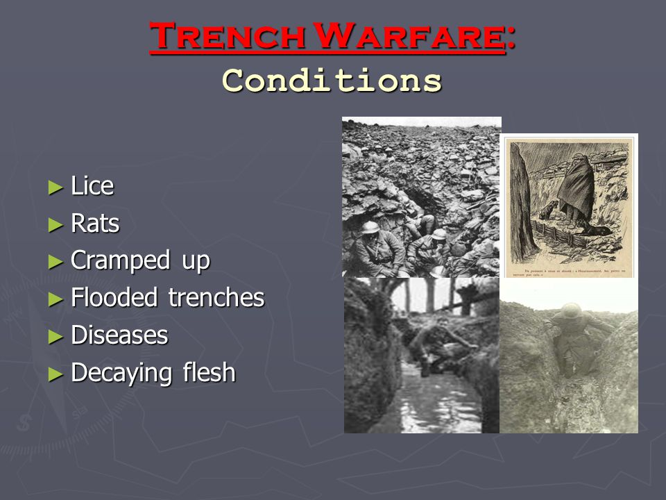 Trench Warfare: Conditions ► Lice ► Rats ► Cramped up ► Flooded trenches ► Diseases ► Decaying flesh