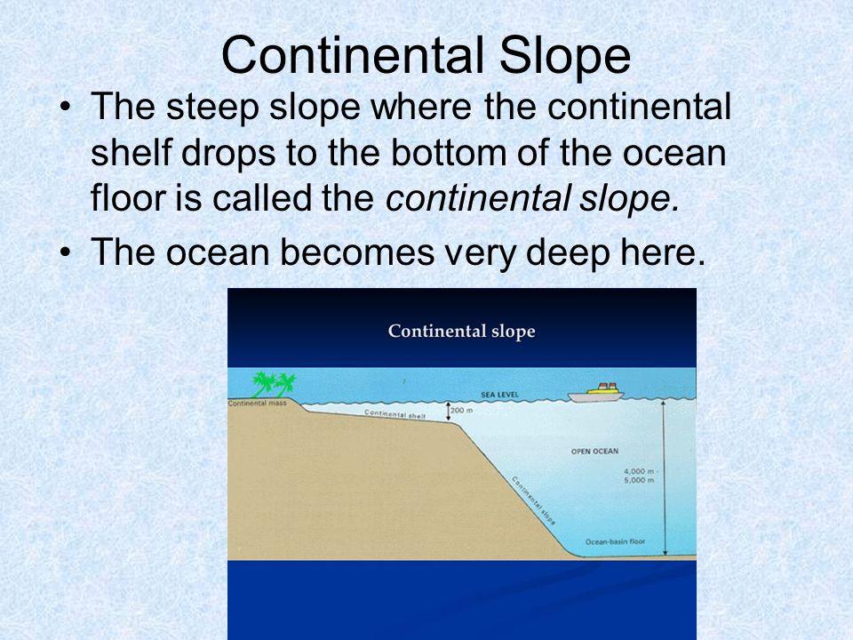 Mid-Ocean Ridge The largest mountain range on Earth.
