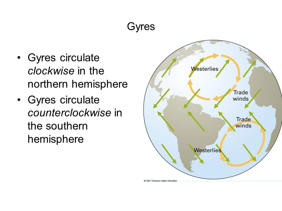 Gyres Gyres circulate clockwise in the northern hemisphere Gyres circulate counterclockwise in the southern hemisphere