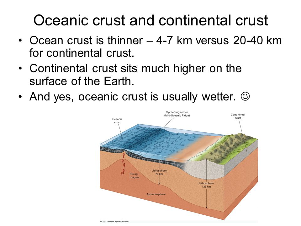 Surface Ocean Currents Currents on the west side of the ocean basin (i.e.
