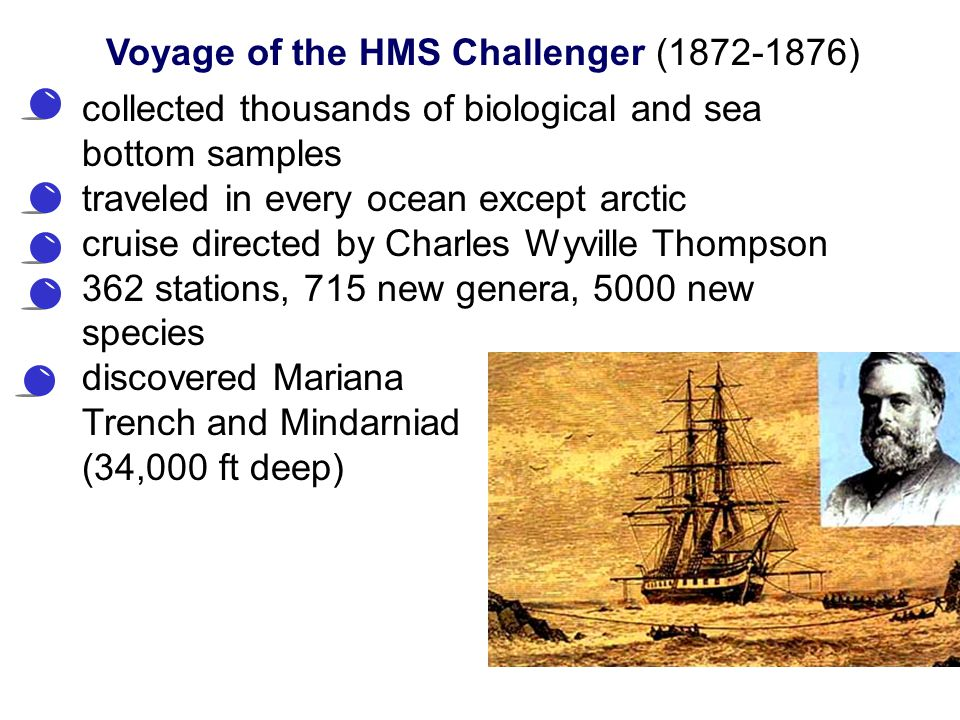collected thousands of biological and sea bottom samples traveled in every ocean except arctic cruise directed by Charles Wyville Thompson 362 station