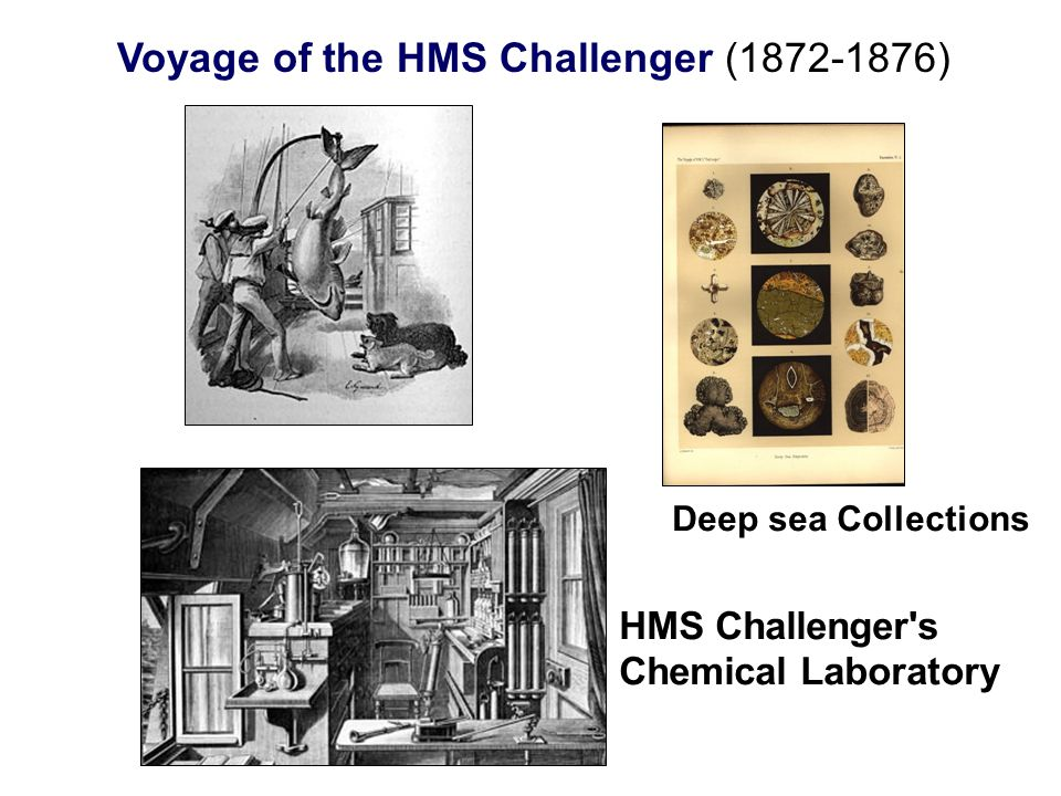 HMS Challenger's Chemical Laboratory Deep sea Collections
