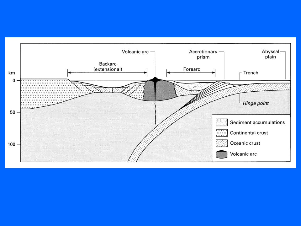 Sedimentary basins Sedimentary basins are the subsiding areas ...