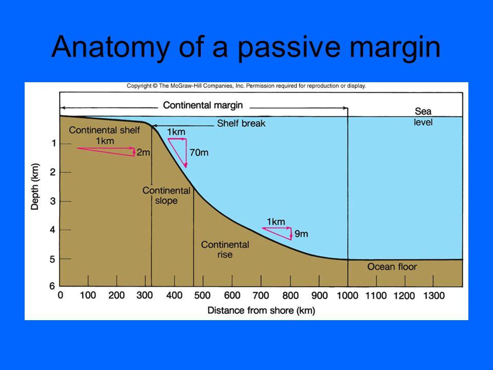 Anatomy of a passive margin