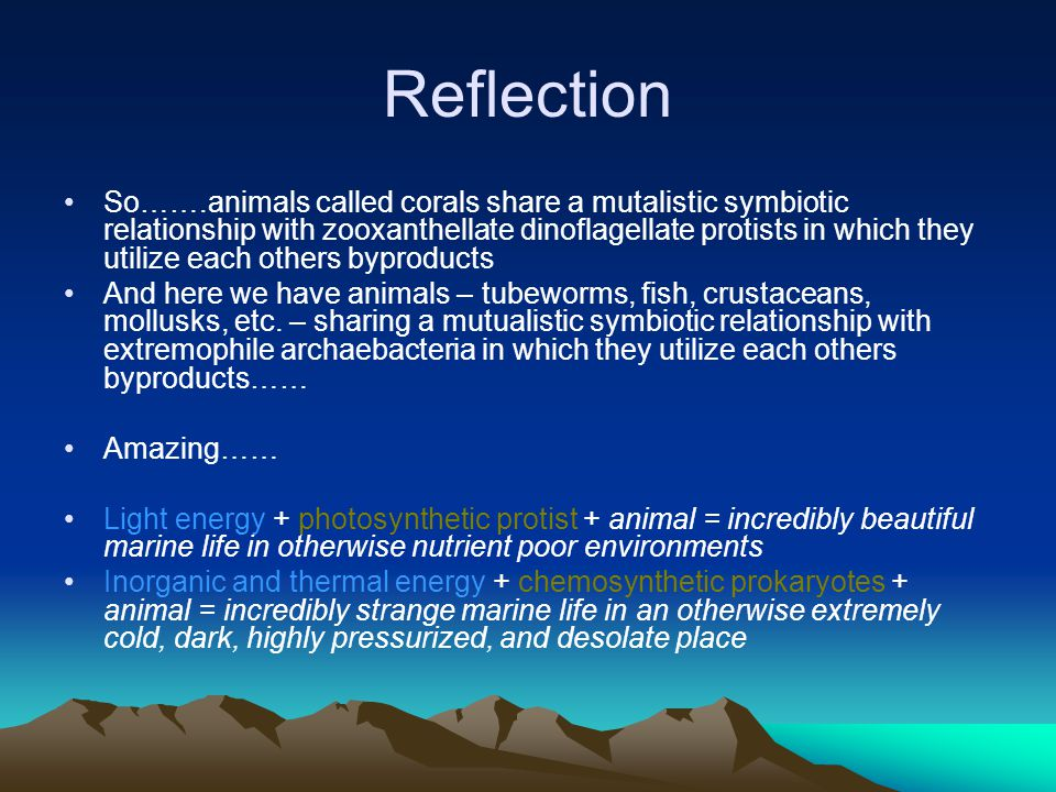 Reflection So…….animals called corals share a mutalistic symbiotic relationship with zooxanthellate dinoflagellate protists in which they utilize each