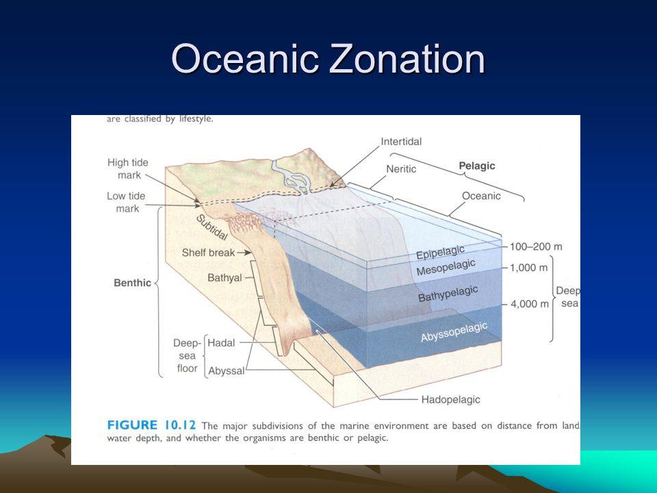 Oceanic Zonation
