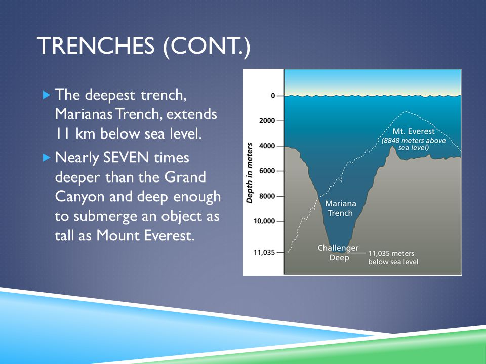 TRENCHES (CONT.)  The deepest trench, Marianas Trench, extends 11 km below sea level.  Nearly SEVEN times deeper than the Grand Canyon and deep enou