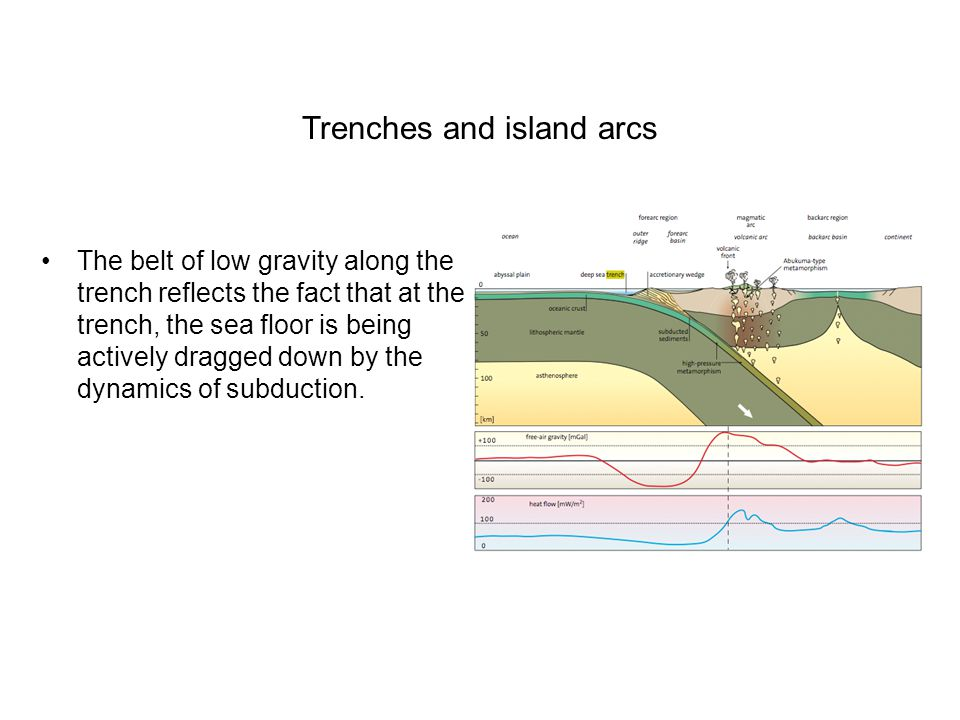 Trenches and island arcs The belt of low gravity along the trench reflects the fact that at the trench, the sea floor is being actively dragged down by the dynamics of subduction.