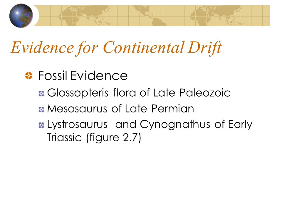 Evidence for Continental Drift Fossil Evidence Glossopteris flora of Late Paleozoic Mesosaurus of Late Permian Lystrosaurus and Cynognathus of Early T