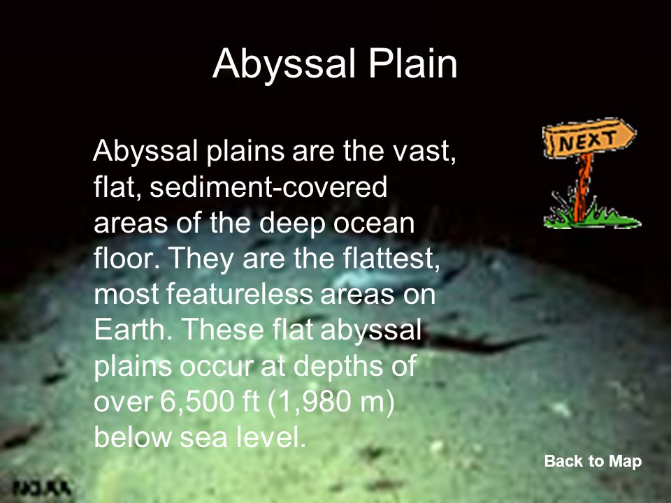 Abyssal Plain Abyssal plains are the vast, flat, sediment-covered areas of the deep ocean floor. They are the flattest, most featureless areas on Eart