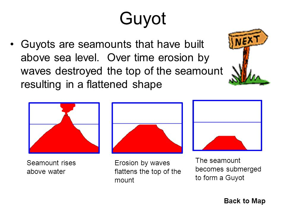 Guyot Guyots are seamounts that have built above sea level. Over time erosion by waves destroyed the top of the seamount resulting in a flattened shap