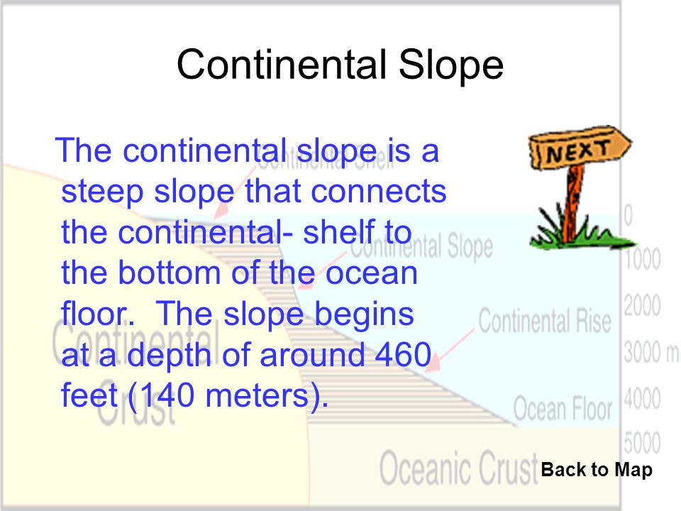 Continental Slope The continental slope is a steep slope that connects the continental- shelf to the bottom of the ocean floor. The slope begins at a